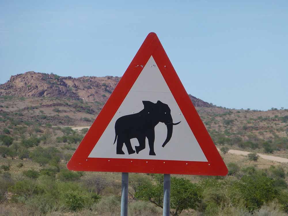 Achtung Elefanten.