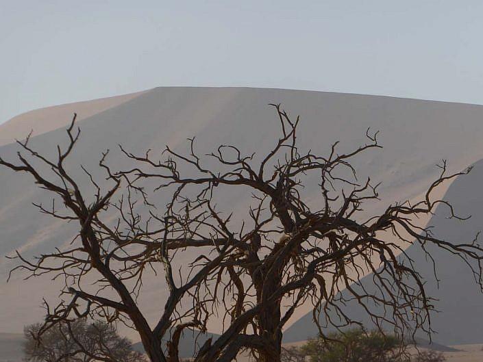 Das Deadvlei ist Teil des Namib-Naukluft- Nationalparks.