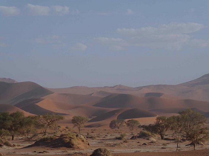 Wüsten Landschaft.