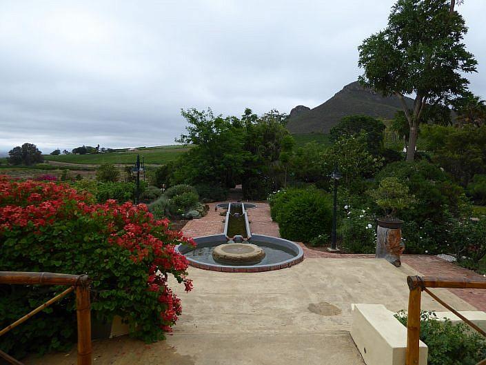 Weinfarm in Robertson.