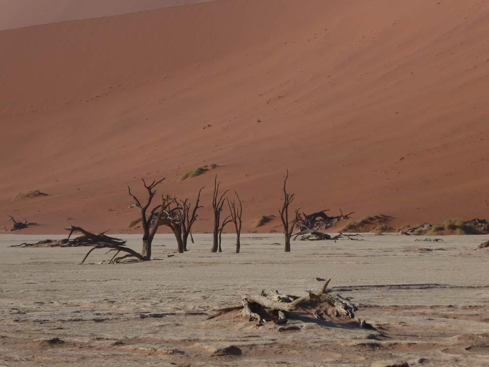 Deadvlei. Namibia