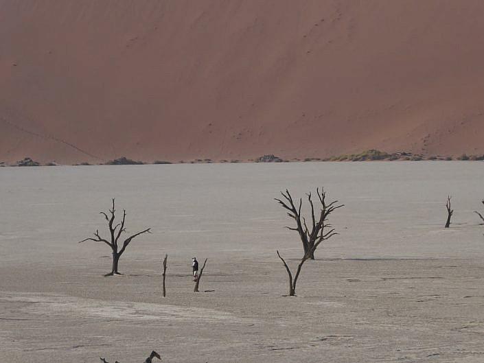 Sehr trockenes Land. Deadvlei. Namibia