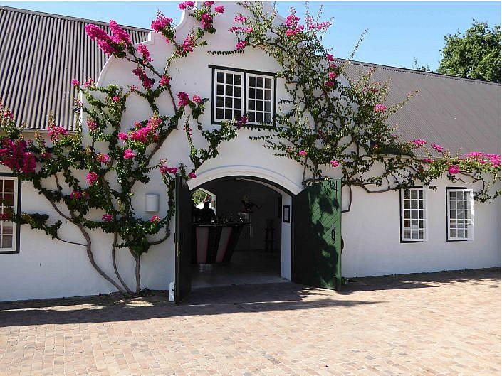 Weingut in Stellenbosch.