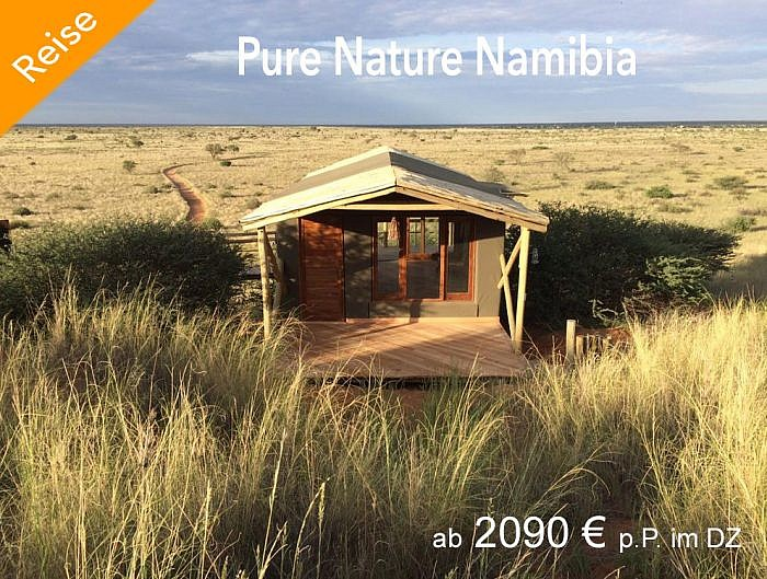Pure Nature Namibia
